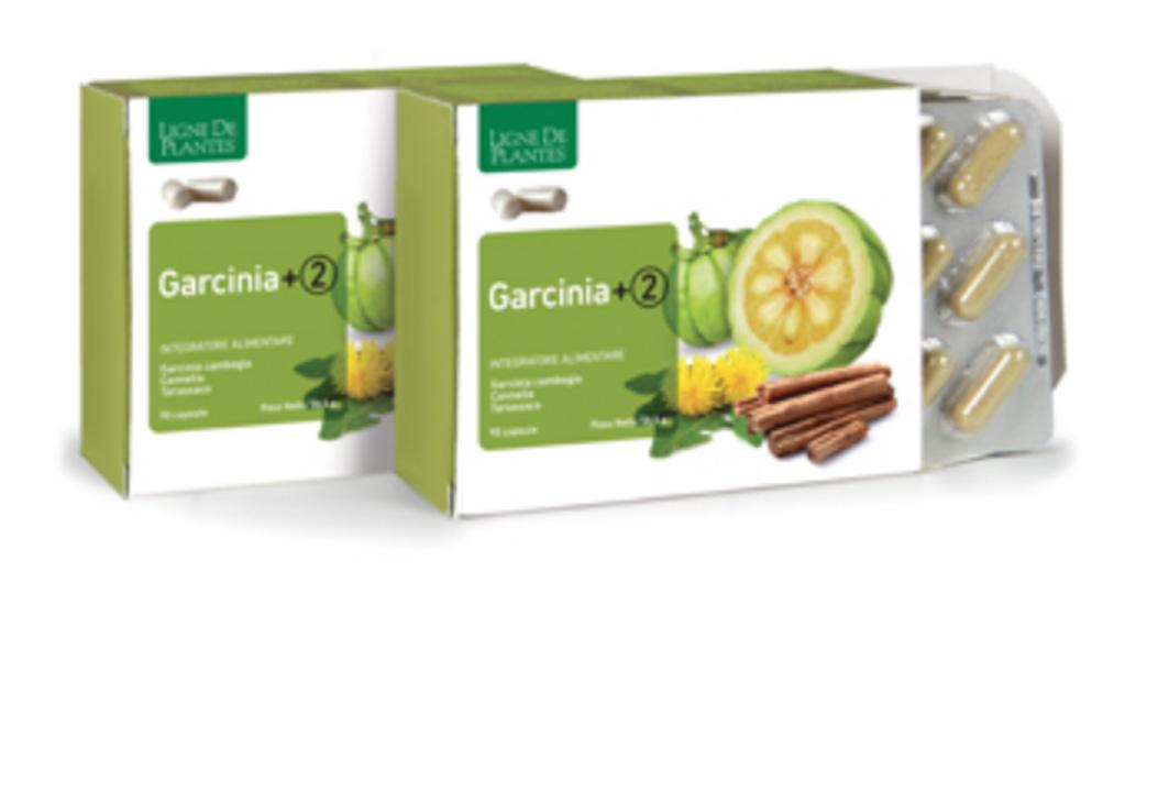 Garcinia + 2 Ligne de Plantes