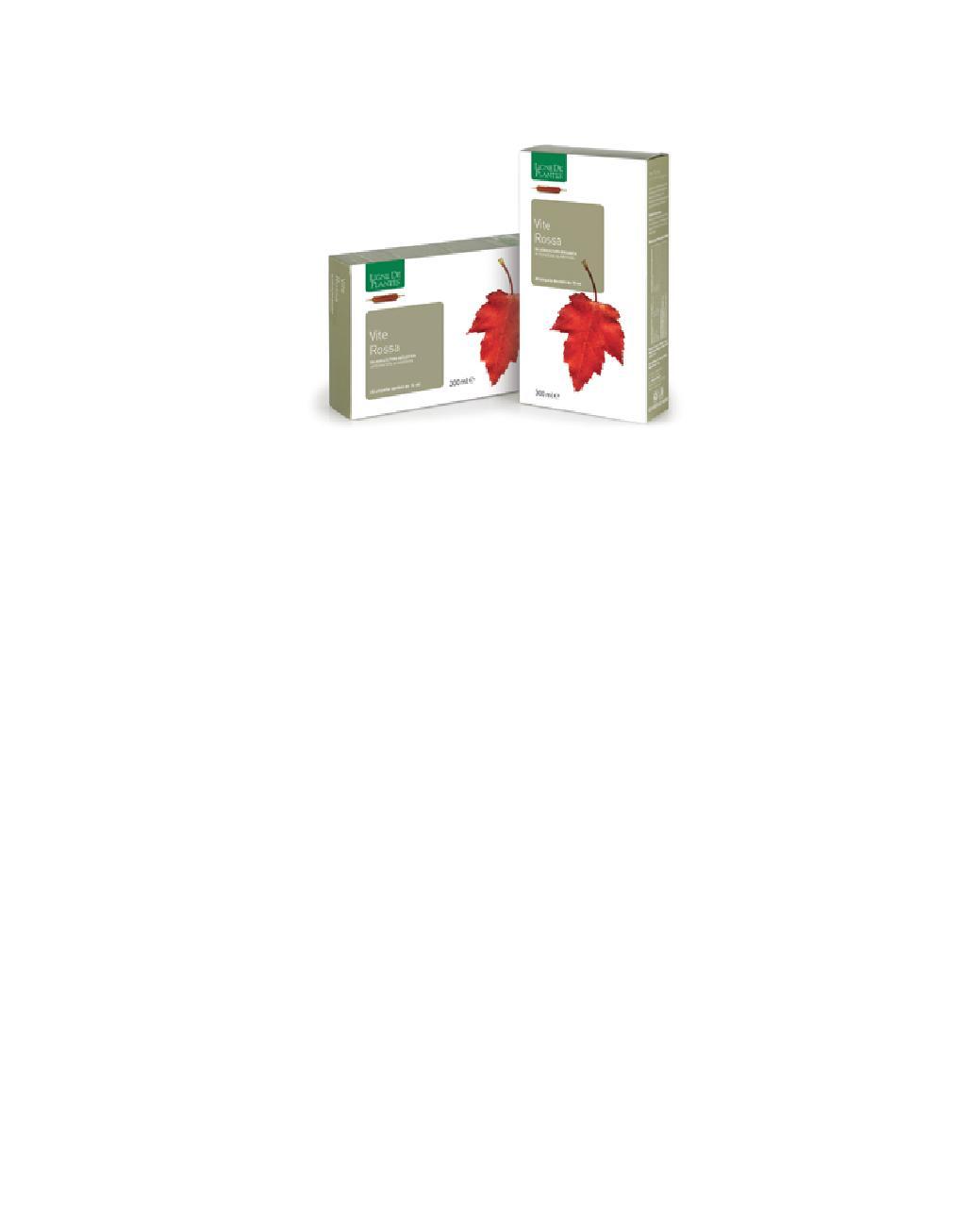Vite Rossa Bio Ligne de Plantes microcircolo